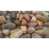 园林铺路鹅卵石 杂色鹅卵石 黑色鹅卵石白色鹅卵石
