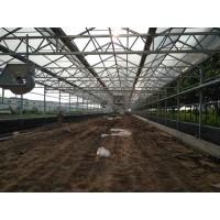 污泥干化太阳能烘干工程