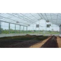 煜林枫太阳能污泥干化温室工程