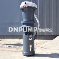 简易式轴流泵型号
