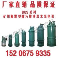 山东BQS30-170矿用隔爆型潜水排沙泵生产厂家