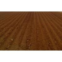污泥脱水和污泥干燥处理工程