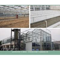 煜林枫太阳能干燥温室系统