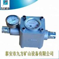 供应铜川ZGS-6煤层注水表