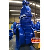 大口径软密封闸阀-专业生产Z545X伞齿轮软密封闸阀
