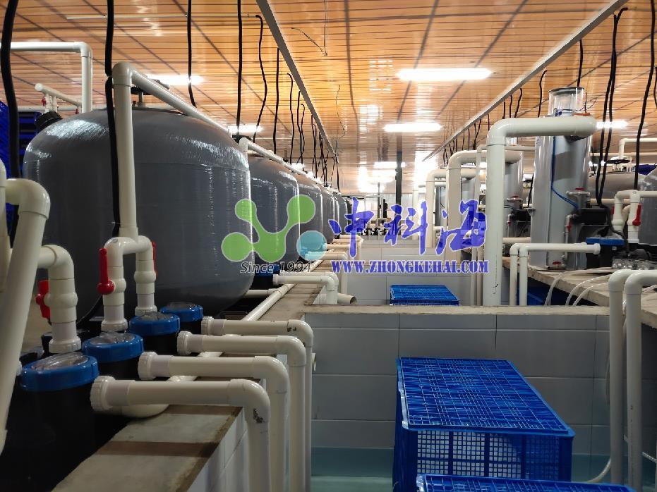 中科海 养殖尾水处理系统助力养殖尾水治理工作