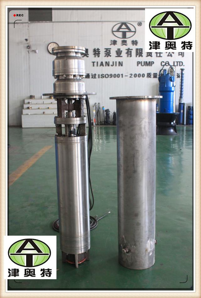 海水提升电泵船厂海水抽送