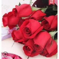 花田玫瑰花鲜花云南直发水养新鲜批发一扎鲜切花插花空运家用花束