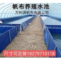 大型养殖帆布水池箱-鱼池虾池刀刮布池水蛭养殖池环保无害