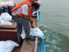 解决南湖多年藻华难题!以色列尖端科技助力保护珍贵水资源