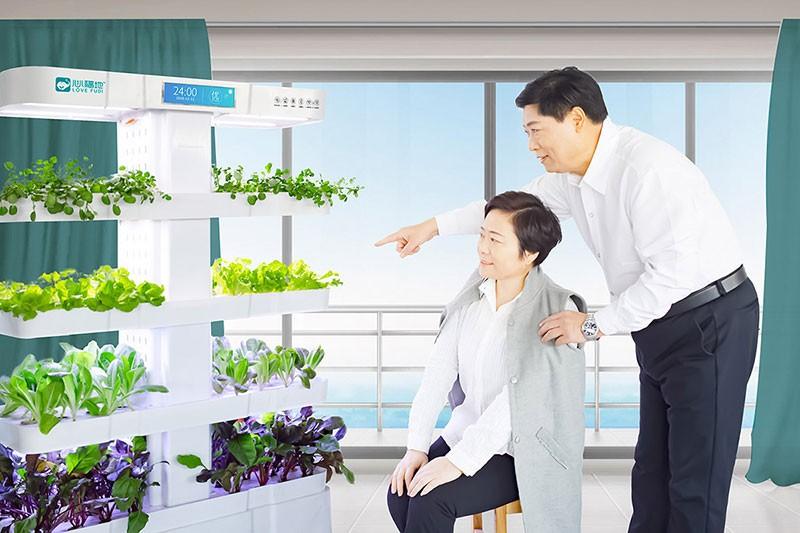 水培蔬菜种植机 空气加湿净化一体机