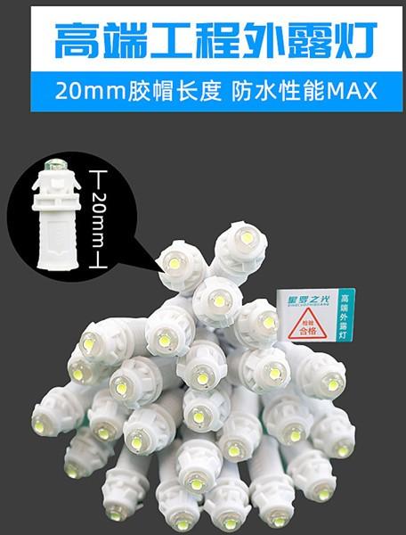 LED外露灯 LED穿孔灯 星罗之光工程款